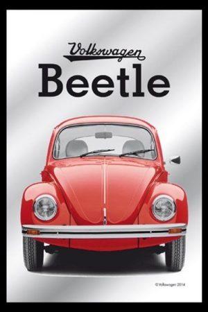 espejo beetle