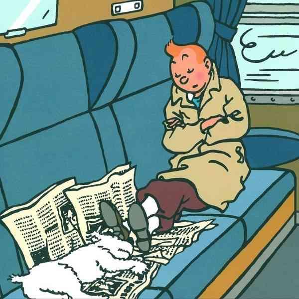 cuadro tintin y milu durmiendo en el tren